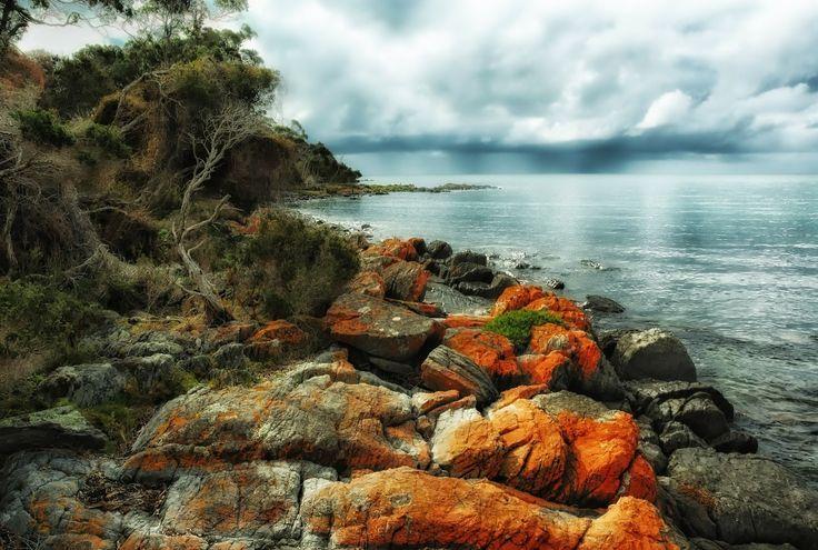 Tazmánia / Tasmania Forrás/source: pixabay.com