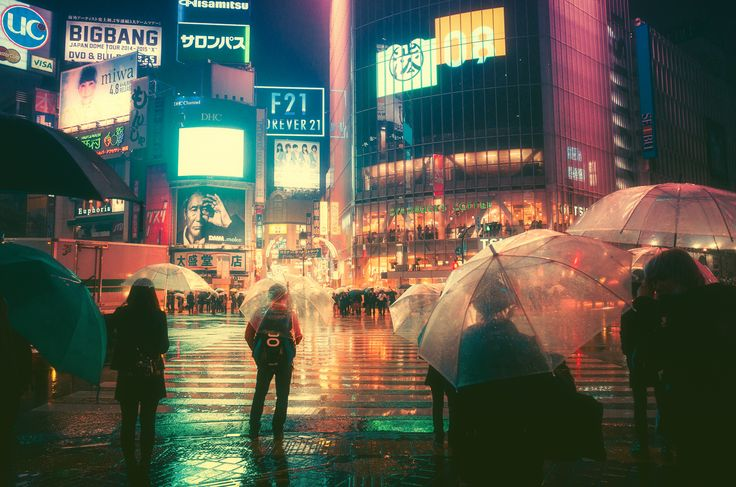 A rainy night in Tokyo [16001060] Photographed by Masashi Wakui