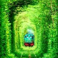 Image result for cool places