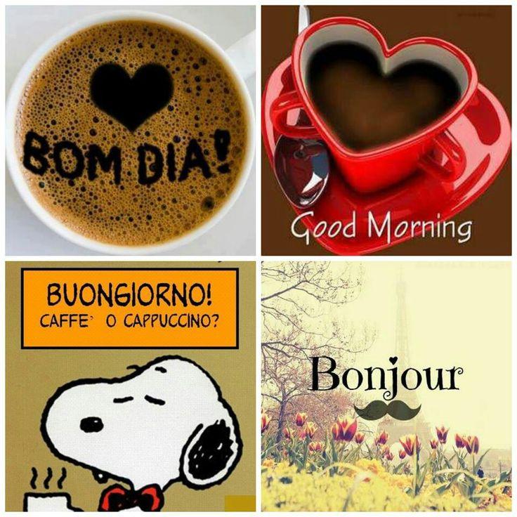 Bom Dia,  good morning have a nice day,  , Buongiorno,  Bonjour   Buen Dia   :)