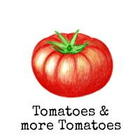 Tomatoes & more Tomatoes