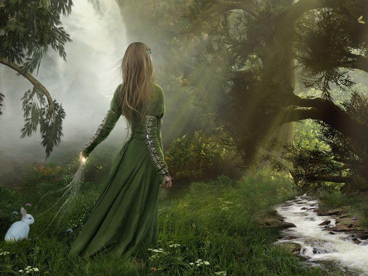 Image result for forest images pinterest