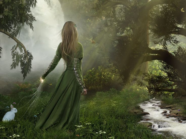 enchanting | Free Enchanted Forest by titusboy Wallpaper - Download The Free ...