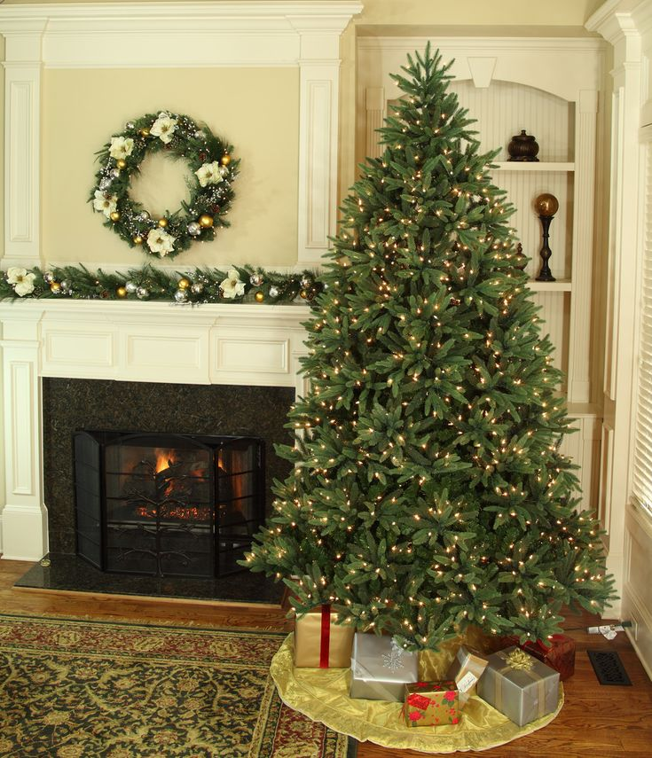Best 25+ Fresh cut christmas trees ideas on Pinterest | Christmas ...