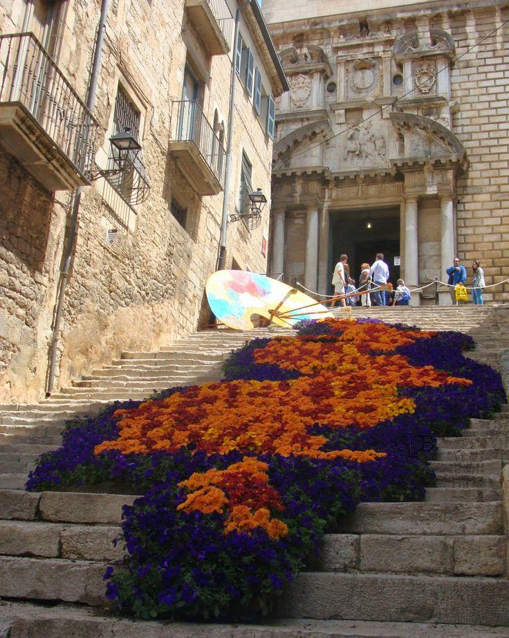 #TempsdeFlors e #Girona si riempie di fiori #Spagna #Spettacolo #colori #profumi Foto e resoconto su #GlobArts: http://glob-arts.blogspot.it/2014/05/temps-de-flors-girona-2014-primavera-fiori-catalunya.html #Nonperdetevelo #Chenepensate?