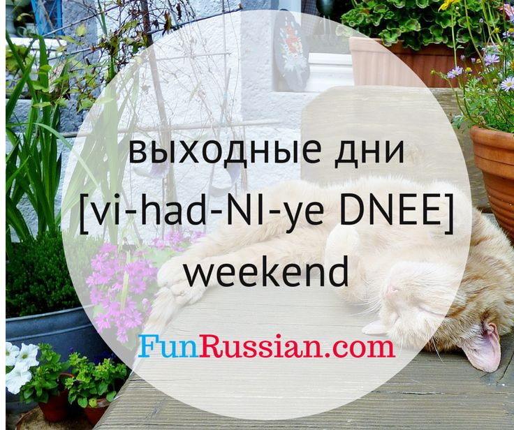 Russian Phrases And More Learn 38