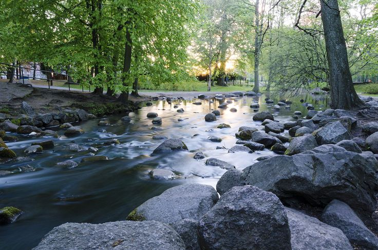 Brook in the park #photography #gdansk