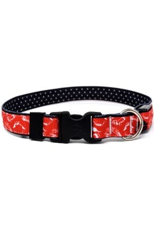 Orion Kisses Red LED 🐶  Dog Collar - Free Shipping @ $50  - LED lit adjustable buckle collar - Red with white kiss marks - 3 modes - fast, slow & constant on - USB rechargable #LEDcollars #kissesred #kisses