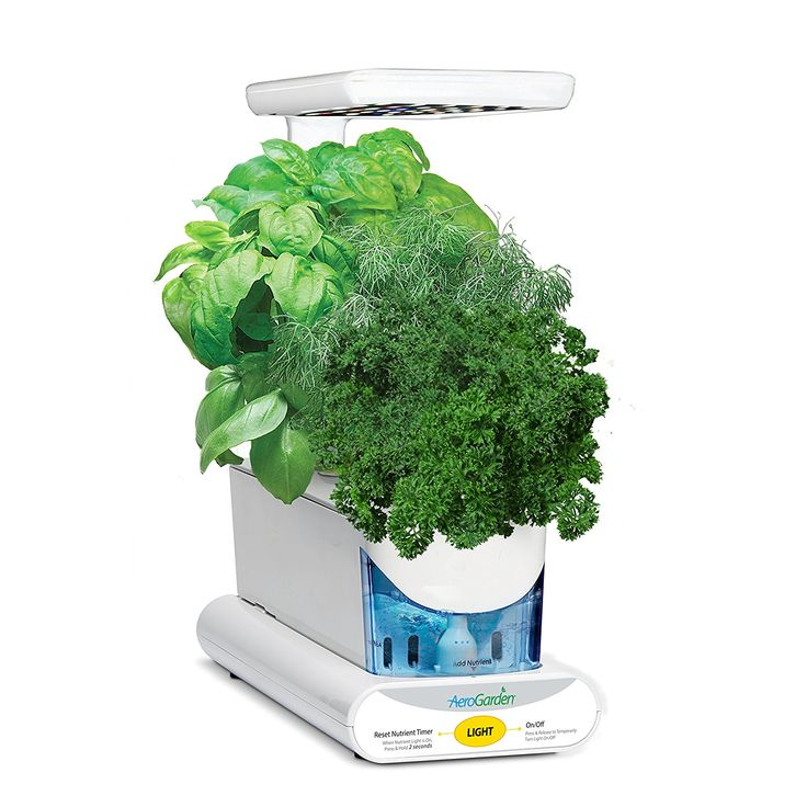 Miracle-Gro AeroGarden Sprout LED with Gourmet Herb Seed Pod Kit, White: Amazon.co.uk: Garden & Outdoors