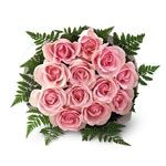 Bouquet of 10 pink roses with green fillers for your loved ones @ Rs 399
