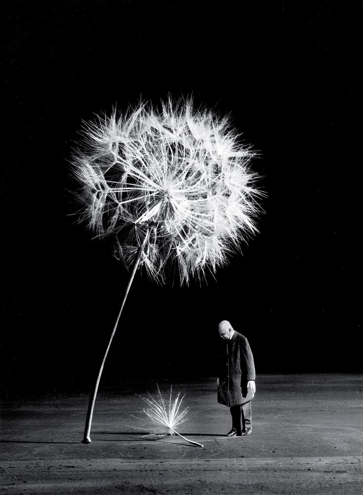 Populaire Les 25 meilleures idées de la catégorie Photographie contemporaine  IN79
