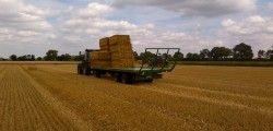 Versatile usage of bale trailers make them widely used in field work. Well suited for the transport of: straw bales bale silage pallets long timber material: wood logs, planks and other materials cut logs They are used mainly in agriculture. Thanks to the large cargo area and the optimal capacity they are used to transport …