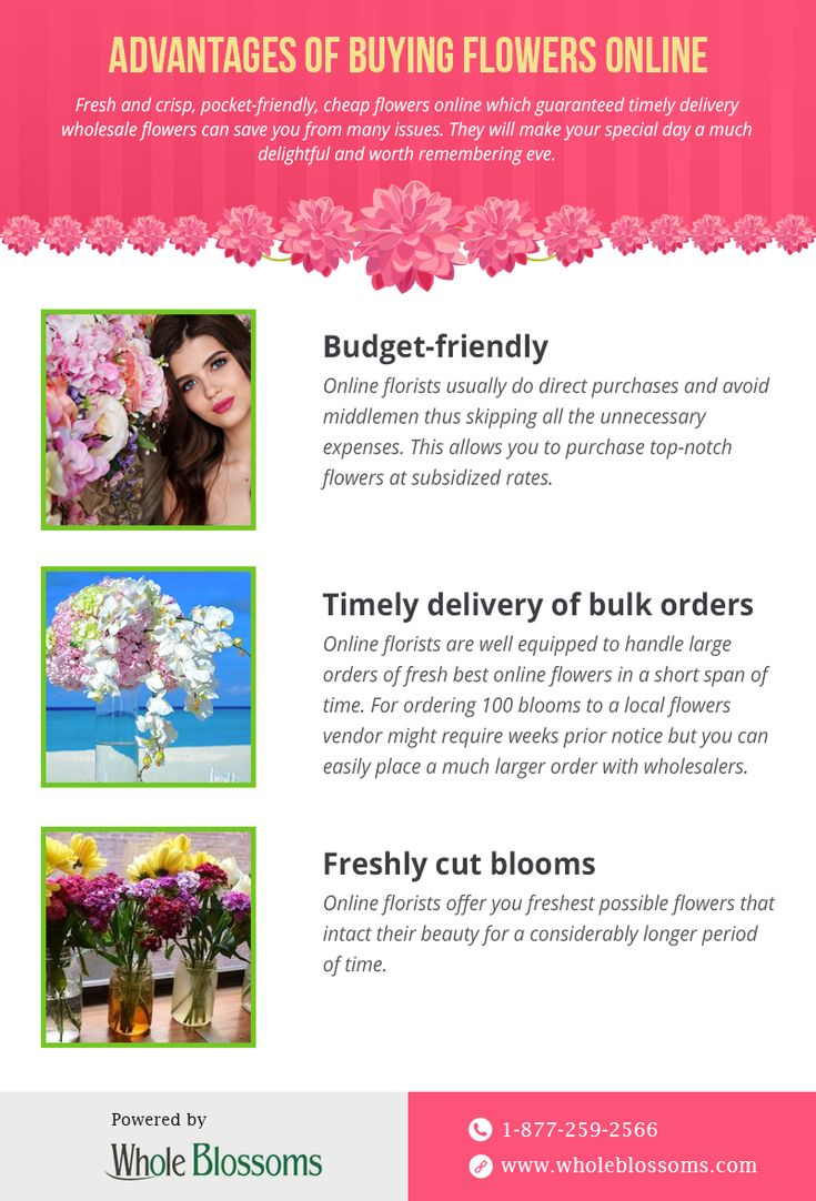 The 7 Best Flower Delivery Ideas Images On Pinterest Flower