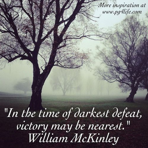 William McKinley Quote On Perseverance