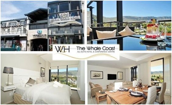 The long awaited spring has joined us so for all the outdoor enthusiast come and enjoy yourself at Whale Coast Hotel for our Early Whale Special, includes breakfast and big five of the sea boat cruise.