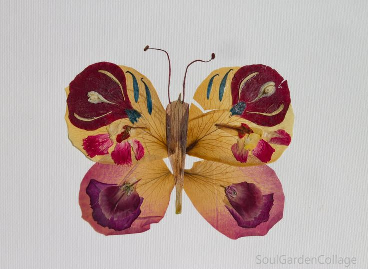 Pressed roses petals greeting card  A5 Handmade Unique Butterfly Oshibaba Herbarium Botanical by SoulGardenCollage on Etsy