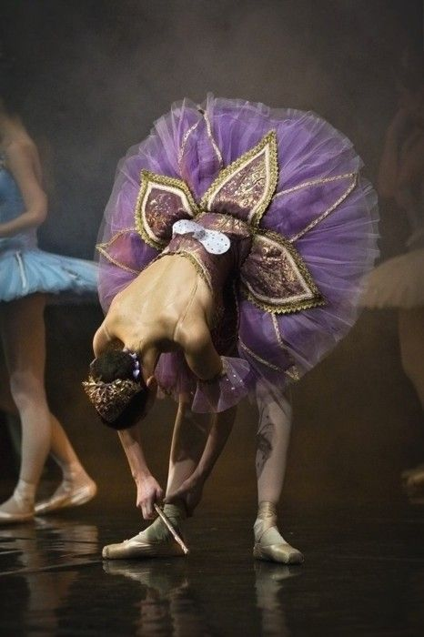 Ballet; I love the purple tutu!