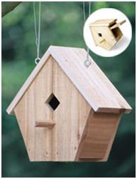 Free Plans - One Board Bird House