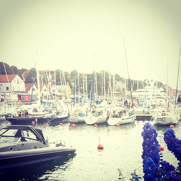 Boats in Visby