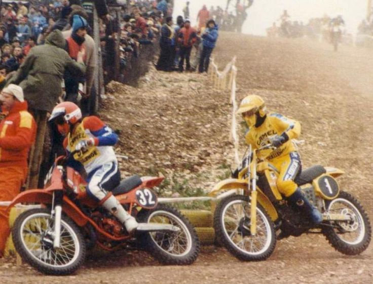 Seppenwolde & Everts