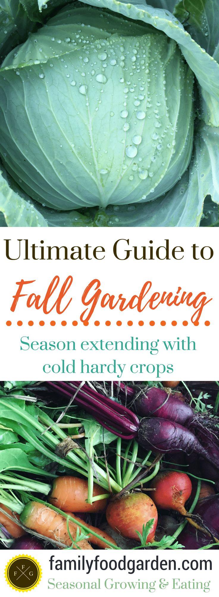 Ultimate Guide to Fall & Winter Gardening – Gardening
