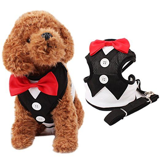 Bowtie Hunde Weste Geschirre Brustgeschirre mit Ziehen Riemen S M L. Gentleman stil hunde brustgeschirre.Schön für Geburtstag,hochzeit,und parteien