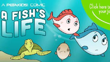 FREE A Fish's Life Stickers on http://www.canadafreebies.ca/