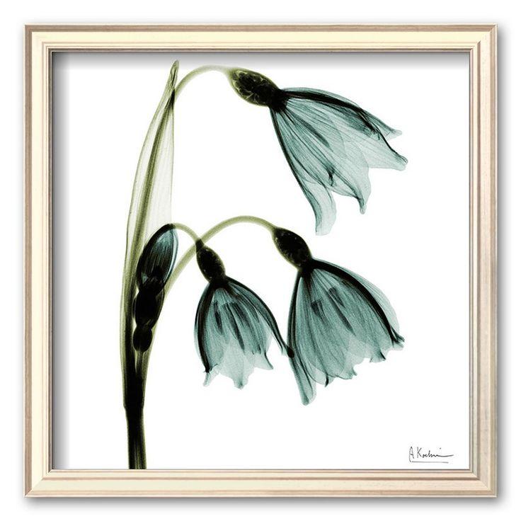 Art.com Three Tulips in Green Framed Art Print by Albert Koetsier, Multicolor