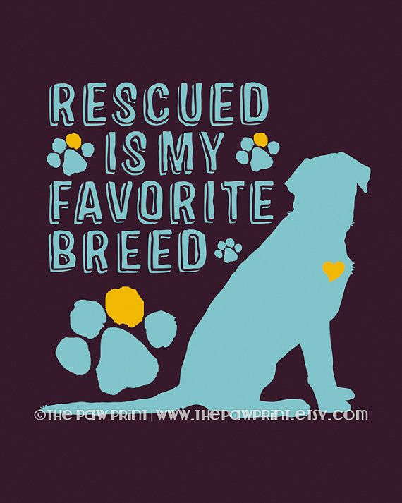 Rescue Dog Quote Wall Decor Choose Fine Art, Gallery Wrapped Canvas or Bamboo Mount