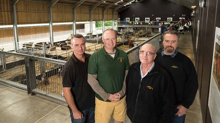 Brothers David (left), Rob and Richard (right) with father Roger in the livestock shed with elevated viewing platform © Jim Varney