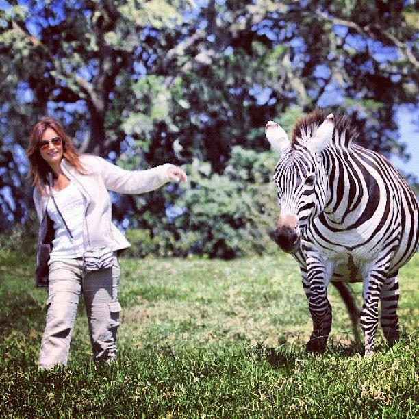 @PatriLopezRuiz y Marty la cebra? http://instagr.am/p/M6jolhxTDg/