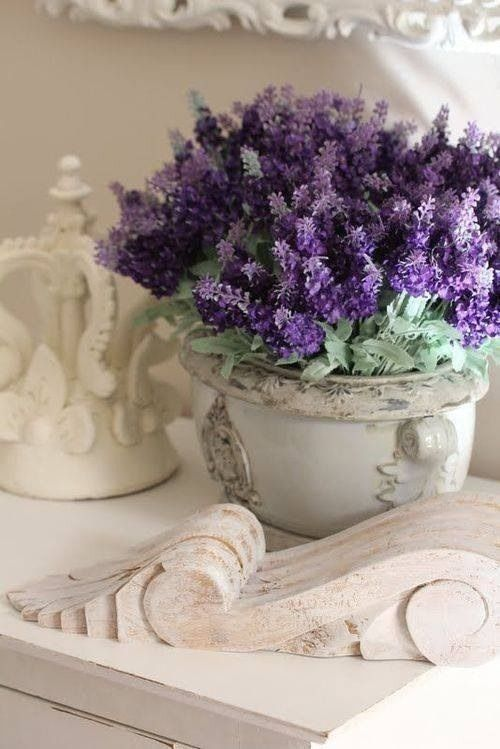 French Country Living; Graceful Interiors; Fresh & Traditional Design ~ #lavender #lavendertopurple #cottagestyle #shabbychic