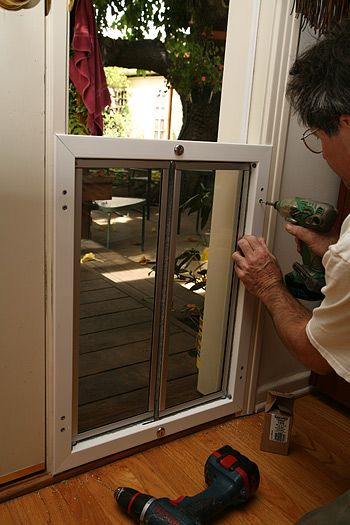 Bifold doggy door!  Awesome