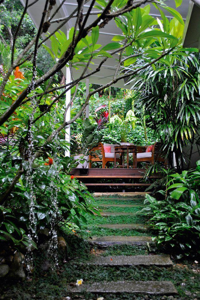 406 best Tropical gardening images on Pinterest Gardening