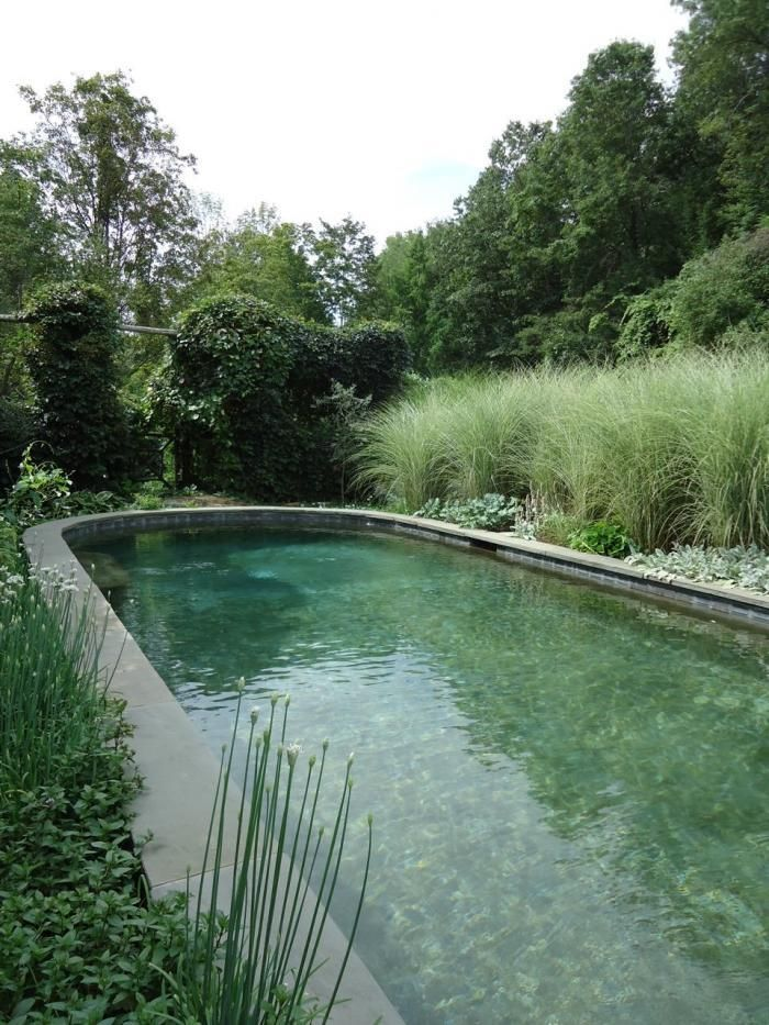 "The bottom of the pool is ""intensely painted to look like a pond, with about nine different colors of paint"""