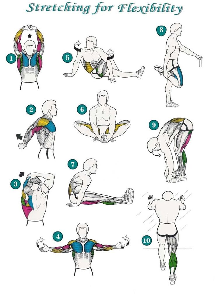 stretching exercises | Safety Stretching Exercise Posters http://www.meandmybody.com/exercise ...