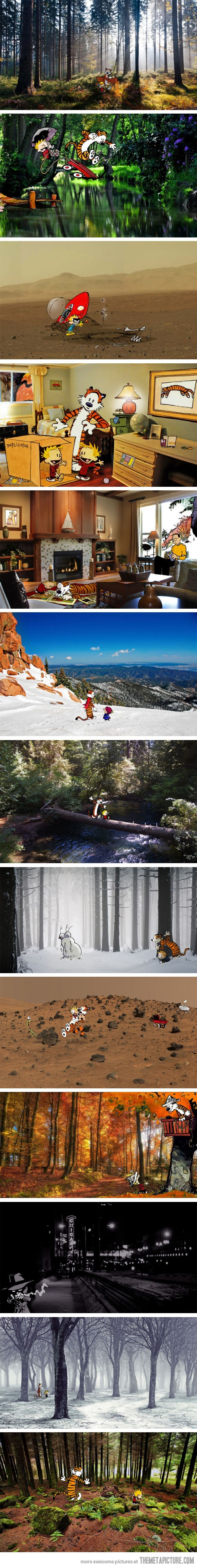Calvin and Hobbes in real locations…