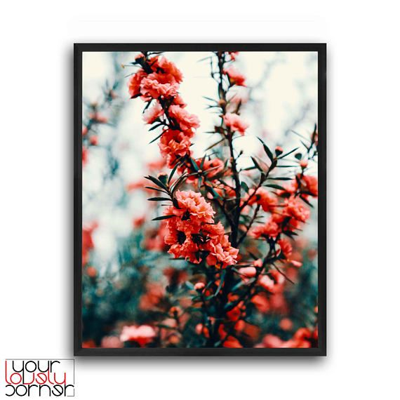 Flowers photography Flowers art print Flowers wall art