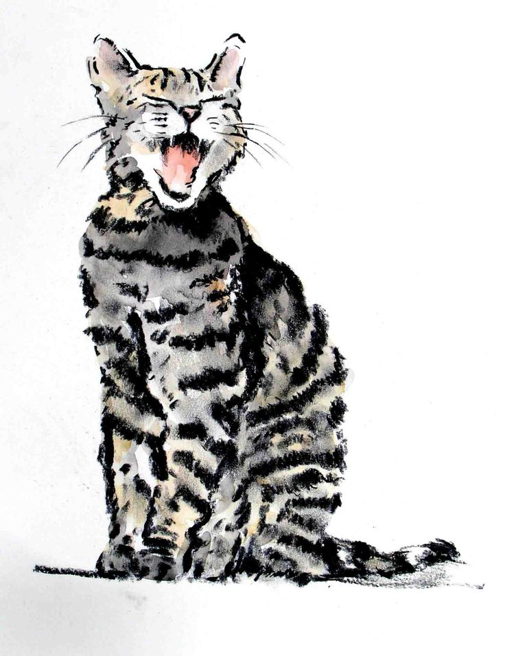 'Cat' -  print by Sue Sareen~