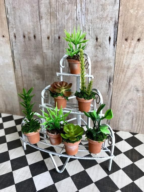 Dollhouse Miniature 1:12 Scale House Plant in a Terracotta Pot