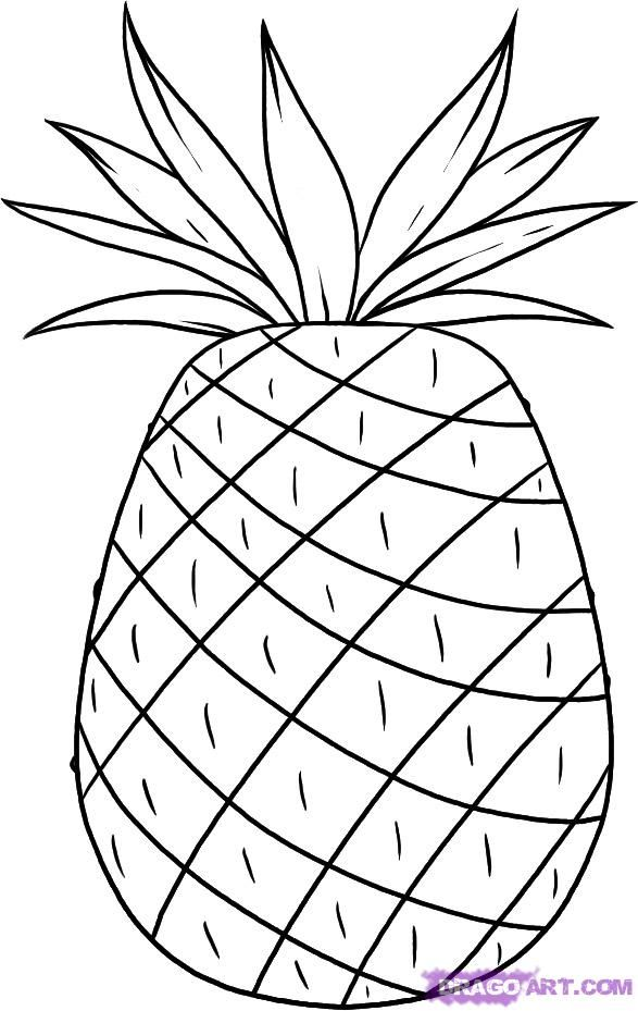 Coloring Pineapple Drawing Pineapple Quilt Pattern Wool