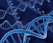 Watchdog Warns Of 'Dirty Dozen' Hormone Disruptors As Scientists, Industry Argue Regulation