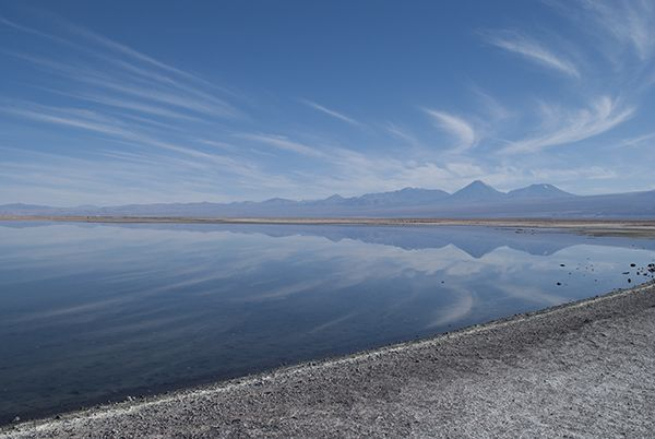 Laguna Chaxa, reserva nacional Los Flamencos, Chile