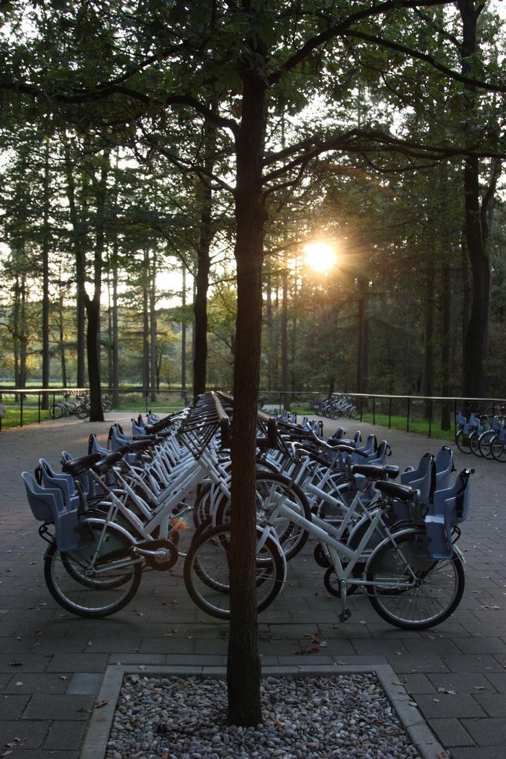 free bikes - Holland - Nationaal Park Hoge Veluwe