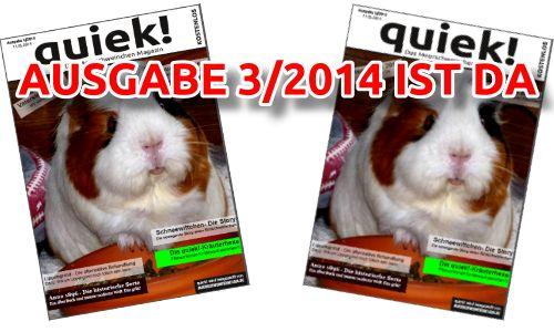 quiek! 3/2014 ist da – Download und alle Links zum #Meerschweinchen #Magazin #quinea #pig