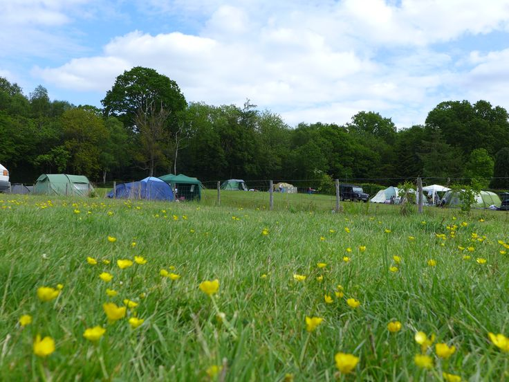 We are a tent only (also VW sized campervans) campsite on two fields totalling around 2.5 acres and we are licenced for 30 tent pitches so there is plenty of room. #campsites