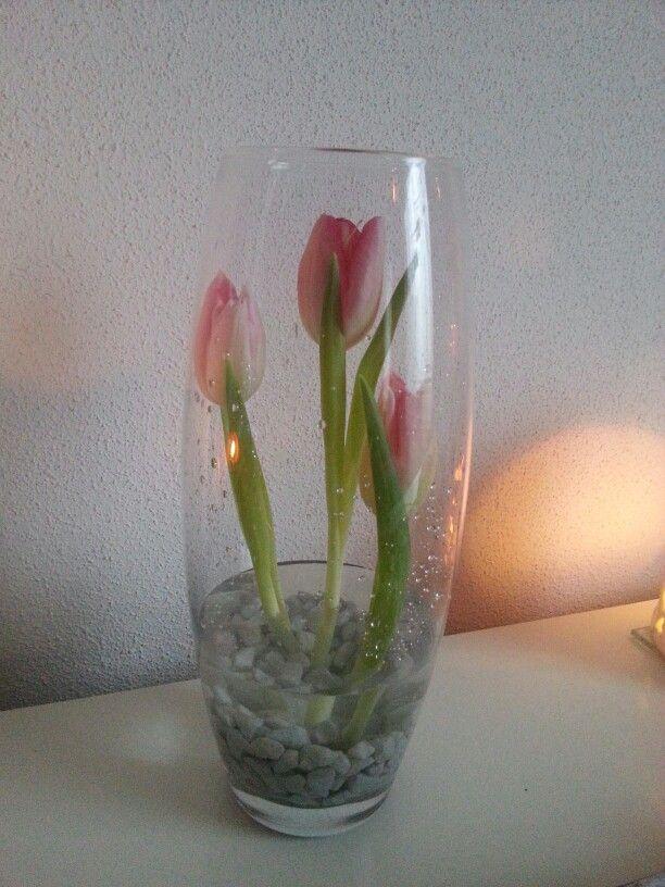 Tulpen met steentjes in een vaas...