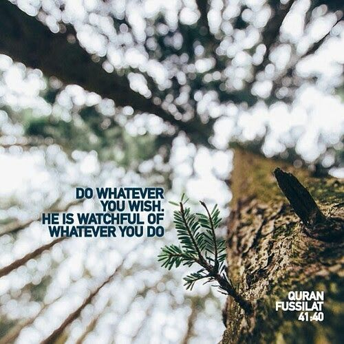 """Do whatever you will; indeed, He is Seeing of what you do."" - Quran 41:40"