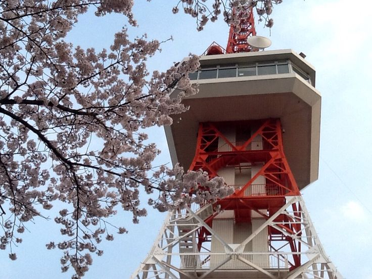 The Tower in Spring 2