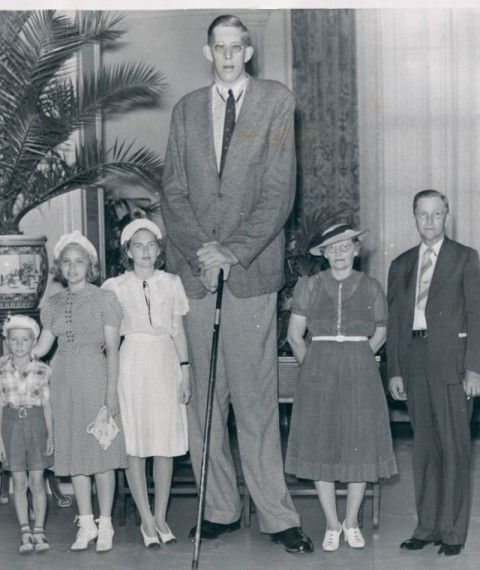 Великаны: самые высокие люди планеты